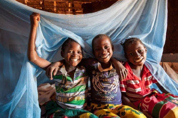Govt. to Distribute 27.4 m Mosquito Nets, Health Minister