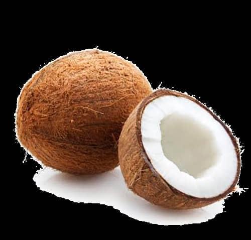 Fresh coconut for sorbet